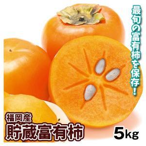 柿 福岡産 貯蔵 富有柿 5kg1箱 フルーツ 果物 国華園|seikaokoku