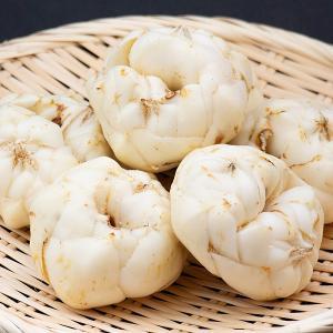 野菜 北海道産 百合根 10個1組 国華園|seikaokoku