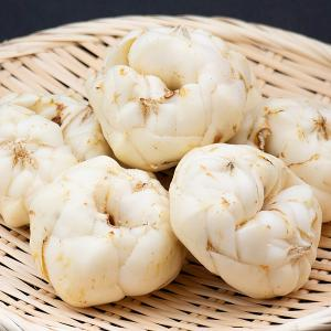 野菜 北海道産 百合根 20個1組 国華園|seikaokoku