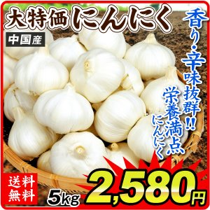 にんにく 大特価 中国産 にんにく 5kg1組(1kg×5袋) 野菜 国華園|seikaokoku