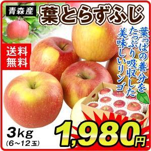 りんご 青森産 ご家庭用 葉とらずふじ(3kg)6〜12玉 サンふじ ふじりんご 林檎 フルーツ 果物 国華園|seikaokoku