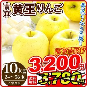 りんご 大特価 青森産 黄王 (10kg) 24〜56玉 ご家庭用 きおう ジューシー 林檎 果物 数量限定 国華園 seikaokoku