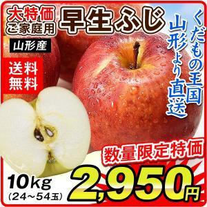 りんご 山形産 早生ふじ(10kg)24〜54玉 ご家庭用 現在発送中 林檎 フルーツ 果物 国華園|seikaokoku