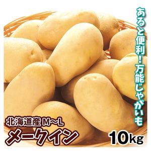 じゃがいも 北海道産 メークイン 10kg1箱 野菜 国華園|seikaokoku
