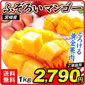 食品 宮崎産 ふぞろいアップルマンゴー 1kg 1組 南国フルーツ 国華園