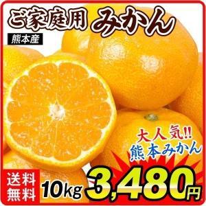 みかん ご家庭用 熊本産みかん(10kg)【10月中旬より発送開始】 蜜柑 柑橘 フルーツ 果物 食品 国華園|seikaokoku