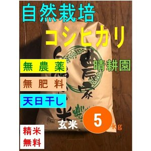 令和元年産 コシヒカリ 自然栽培・無農薬・無肥料・天日干し 玄米 5kg(精米無料・送料別)