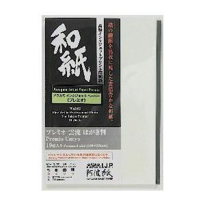 プリント用 和紙 インクジェット ハガキ(10枚) プレミオ 雲流 165g アワガミファクトリー IJ-6426|seirindou