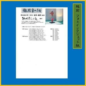 写真用紙 フォトインクジェット紙  越前和紙  厚手(20枚)0.3mm ME-206-A4E|seirindou