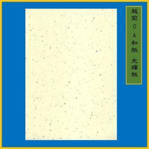 越前和紙 光輝紙 クリーム B5(20枚) 0.15mm ME-102B5|seirindou