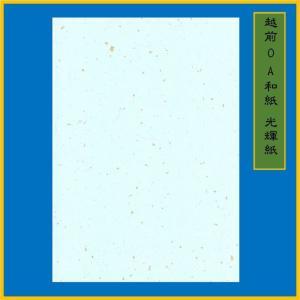 越前和紙 光輝紙 水 B5(20枚) 0.15mm ME-105B5|seirindou