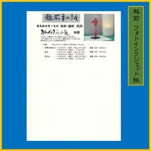 越前和紙 フォトインクジェット 特厚 白 (15枚) 0.35mm ME-203P|seirindou