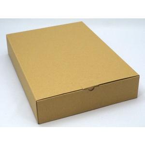 クラフトベンリBOX A4サイズ 10枚入り SSH-02A4|seirindou