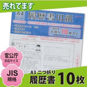 官公庁対応 履歴書 10枚 A4 /リ159