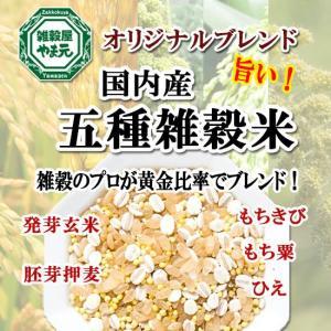 雑穀米 国産 送料無料 1kg 5種ブレンド 雑穀エキスパートが黄金比率ブレンド 安心の国内産雑穀使用|sekainoyamgen