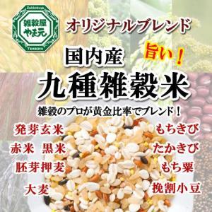 雑穀米 国産 送料無料 1kg 9種ブレンド 雑穀エキスパートが黄金比率ブレンド 安心の国内産雑穀使用|sekainoyamgen