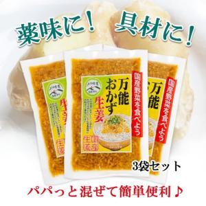 万能 おかず生姜 しょうが醤油漬け 刻み生姜 3袋セット 薬味に ご飯に 130g×3 送料無料 (40214) sekainoyamgen