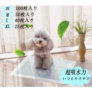 ペットシーツ 炭 ペット シーツ 犬 猫 薄型100枚 安い まとめ買い 大容量 セット 多頭飼い 業務用|seki