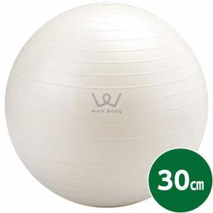 アルインコ ALINCO エクササイズボール30cm WB123