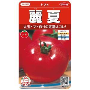 農林水産大臣賞に輝く、生育力が強く病気に強い、着果性のよい大玉トマトです。果肉はしっかりとして日持ち...