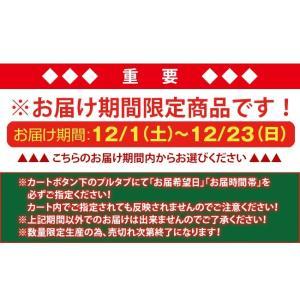 クリスマス限定 甘納豆しゅとーれん/ドイツ伝統お菓子/シュトーレン/甘納豆仕立て/甘納豆の雪華堂|sekkado|06