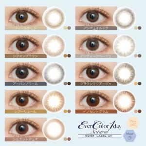 エバーカラーワンデー ナチュラル&モイストレーベルUV/2箱SET(40枚)全13カラー|select-eyes|03