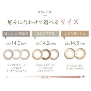 レリッシュ LALISH ワンデー  1箱10枚×2箱SET 中村アン カラコン|select-eyes|04