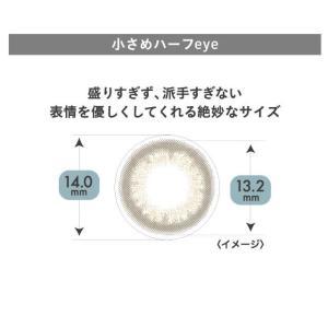 [Point15倍] Miche Bloomin ミッシュブルーミン ワンデーカラコン 1箱10枚×2箱SET|select-eyes|06