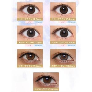 [Point15倍] セレクトフェアリー ユーザセレクト 1箱10枚×2箱SET ワンデーカラコン select-eyes 03