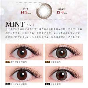 LANDE by TIARYEYES 1箱10枚入り 瑛茉ジャスミンさん愛用【 度なし・度あり 1day カラコン 】|select-eyes|07
