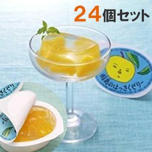 因島 はっさくゼリー 24個セット 八朔果肉入り 果物ゼリー フルーツゼリー 贈り物 スイーツ ギフトの画像