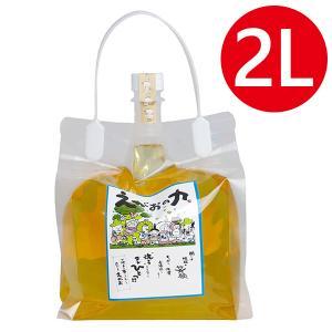 【店内商品すべて送料無料!】  植物油を使用した液体洗剤です。  洗うことなら本当にこれひとつでヨカ...