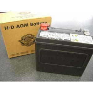 ハーレー純正バッテリー  97~ツーリング 66000212|selected