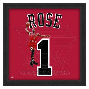NBA ブルズ デリック・ローズ フォト ファイル/Photo File UNIFRAME 20 x 20 Framed Photographic|selection-j