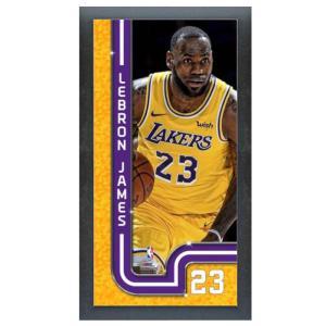 レブロン・ジェイムス フォト レイカーズ NBA  Photo File|selection-j