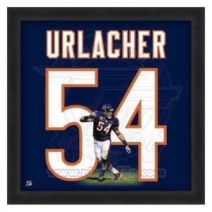 NFL ベアーズ ブライアン・アーラッカー フォト ファイル/Photo File UNIFRAME 20 x 20 Framed Photographic selection-j