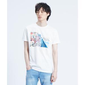 【カテゴリ】メンズ > トップス > Tシャツ 【カラー】オレンジ/グリ...