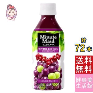 【入    数】:24本 ×3ケース 【原 材 料】:果実(ぶどう、カシス)、香料、ブドウ果皮色素、...