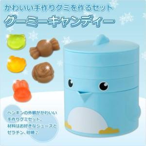 お菓子メーカー グーミーキャンディ|self-shop|02