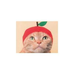 かわいい かわいい ねこフルーツちゃん全6種類|self-shop