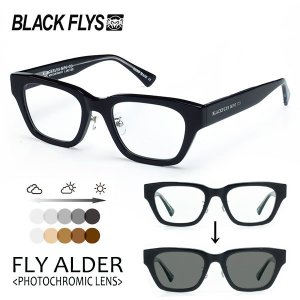 BLACKFLYS,ブラックフライ/21 SPOT/FLY ALDER,フライアルダー 調光レンズ/BF-1412-01/BLACK/GREY PHOTOCHROMIC/サングラス/ユニセックス/ウェリントン/8SPOT|selfishsurf