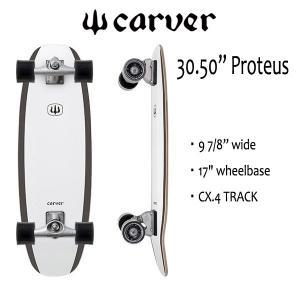 "CARVER SKATEBOARD,カーバースケートボード/30.5""Proteus/CX.4 TRACK/プロテウス/サ-フスケート/2017年NEWデザイン|selfishsurf"