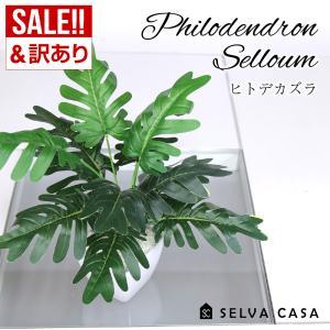 フェイクグリーン 小型 約35cm 人工観葉植物 造花 ヒトデカズラ  インテリアグリーン 送料無料の画像