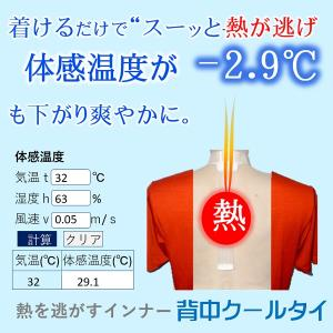 熱中症対策!汗の悩みに!背中のこもり熱を逃がして体を冷まし爽やかに、吸水速乾とコラボして涼感、保冷剤、水不要「背中クールタイ」Mサイズ|senakacool