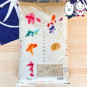 お米 5kg 埼玉県産彩のかがやき 平成29年産...