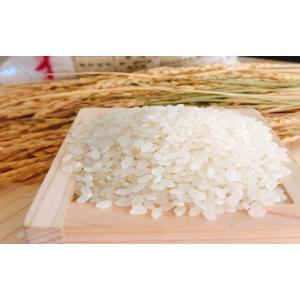 お米 10kg(5kg×2) 埼玉県産彩のかがやき 平成30年産 senda 04