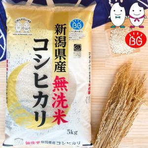 お米 BG無洗米 5kg 新潟県産コシヒカリ 令和2年産|senda