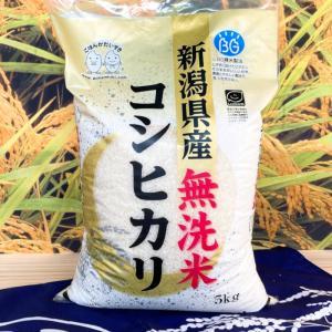 お米 BG無洗米 10kg(5kg×2) 新潟県産コシヒカリ  平成30年産|senda|02