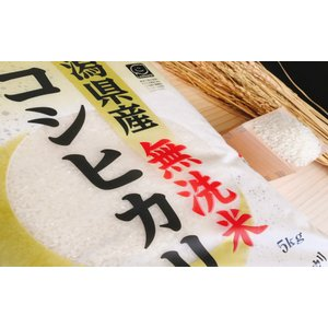 お米 BG無洗米 10kg(5kg×2) 新潟県産コシヒカリ  平成30年産|senda|04