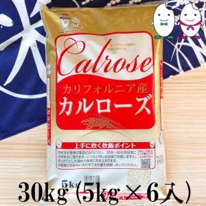 お米 30kg(5kg×6) 米国産カルローズ